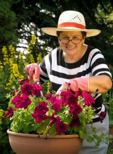 Elderly Care China Gove NC - April is National Garden Month: Why Gardening is Great for Seniors